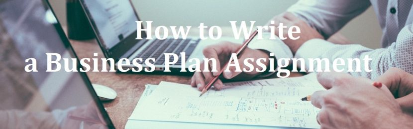 How to Write a Business Plan Assignment