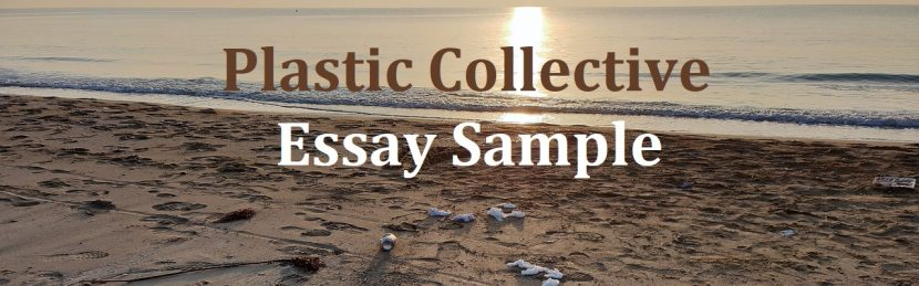 Plastic Collective essay sample